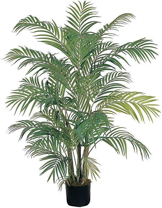 Silk Palm Tree Manufacturers
