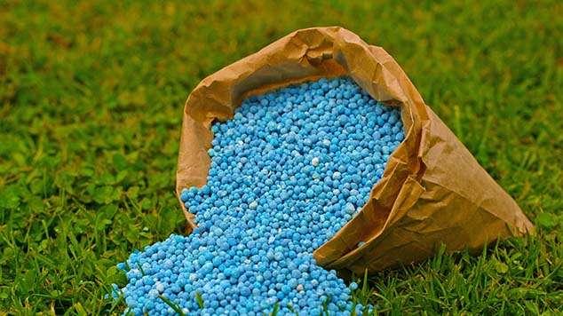 Solid Plant Fertilizer Manufacturers