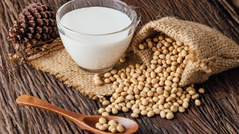 Soy Milk Ingredient Manufacturers