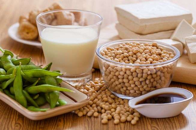 Soy Milk Tofu Manufacturers