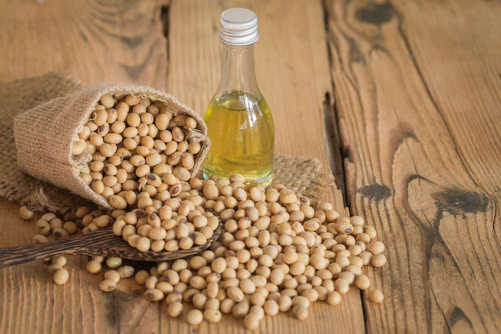 Soy Oil Skin Manufacturers