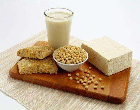 Soy Protein Meal Manufacturers