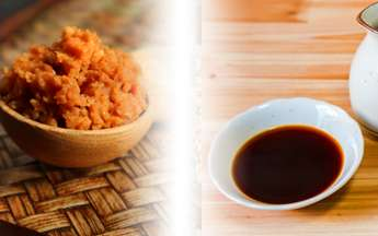 Soy Sauce Condiment Manufacturers
