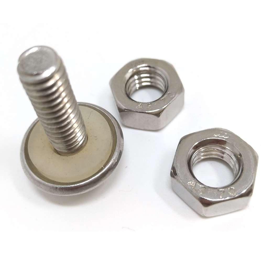 Stainless Screw Bolt Manufacturers