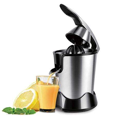 Stainless Steel Electric Juicer Manufacturers