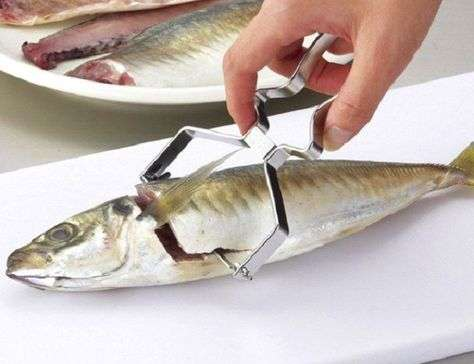 Stainless Steel Fishing Cook Manufacturers