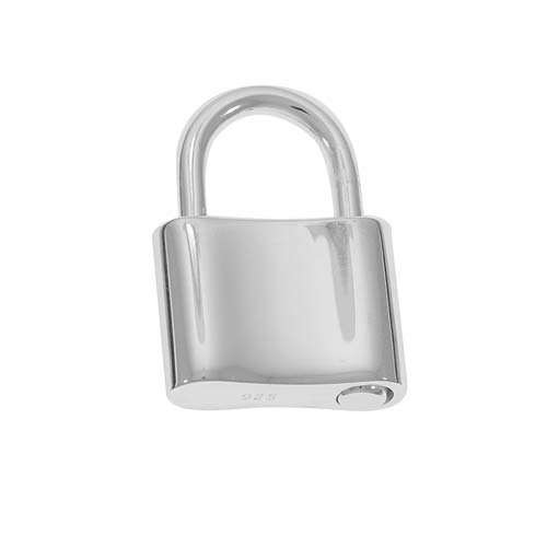 Stainless Steel Lock Manufacturers