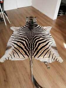 Zebra Skin Rug Manufacturers