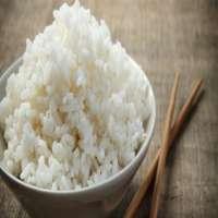 蒸米饭 制造商