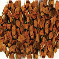 Coconut Shell Chips Manufacturers