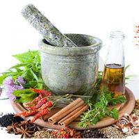 Herbal Raw Material Manufacturers