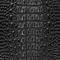 Crocodile Leather Manufacturers