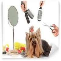Pet Grooming Tools Manufacturers