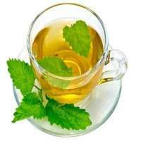 Nettle Tea Manufacturers