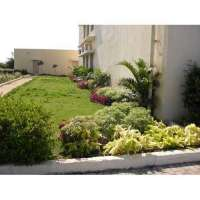 Garden Plantation Services Manufacturers
