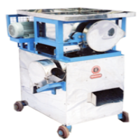 Raw Mango Cutting Machine Manufacturers