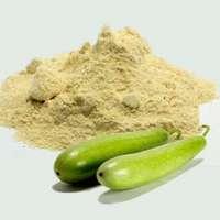 Bottle Gourd Powder Manufacturers
