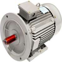 Induction Motors Manufacturers
