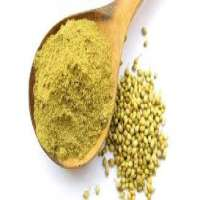 Coriander Powder Manufacturers