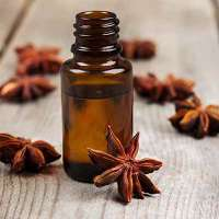 Anise Seed Oil Manufacturers