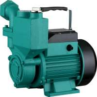 Self Priming Peripheral Pump Manufacturers