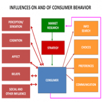 Consumer Behaviour Studies Manufacturers