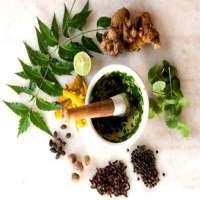 Herbal Piles Medicine Manufacturers