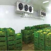 Banana Ripening Plant Manufacturers