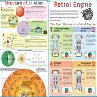 Science Charts Manufacturers