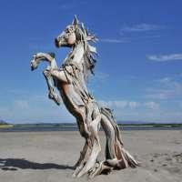 Driftwood Sculptures Manufacturers