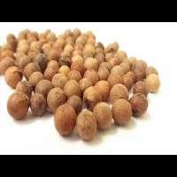 Sandalwood Seed Manufacturers
