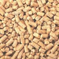 木制药丸 制造商