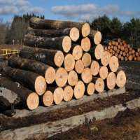 Hardwood Log Manufacturers