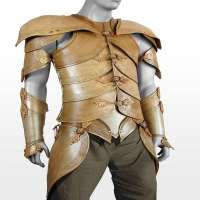 Leather Armour Manufacturers
