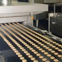 Carbon Steel Conveyor Belt Manufacturers