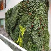 Bio Wall Manufacturers