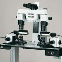 Comparison Microscopes Importers