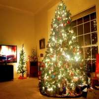 Christmas Trees Manufacturers