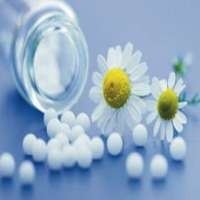 Homeopathic Globules Manufacturers