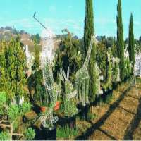 Animal Topiary Frame Manufacturers