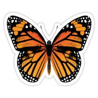 Butterfly Sticker Manufacturers