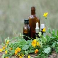 Cancer Herbal Medicine Manufacturers