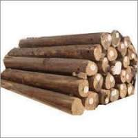 Teak Wood Logs Manufacturers