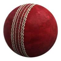 Leather Cricket Ball Manufacturers