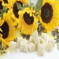 Sunflower Wax Manufacturers