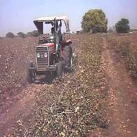 Cotton Stalk Chopper Manufacturers