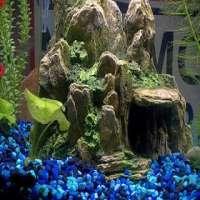 Aquarium Accessories Manufacturers