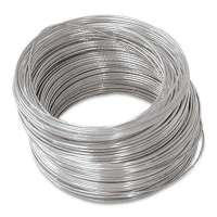 Electro Galvanized Wire Manufacturers
