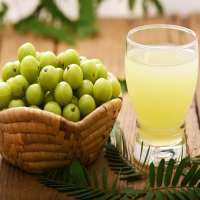Amla Juice Manufacturers