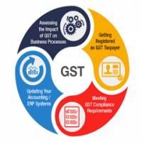 GST Software Importers